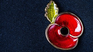 Government warns against poppy scams