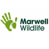 Marwell Zoo student discount