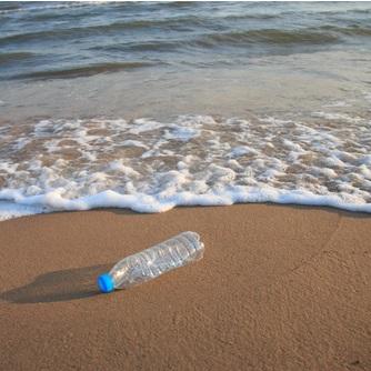 FREE Ren seaweed body wash if you 'kelp' to keep beaches clean