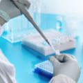 Slash PCR travel test costs to £40