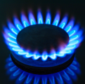 Urgent. Energy firm punch-up
